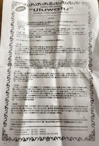 ケチャダンス日本語解説書