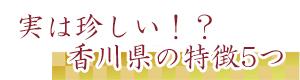 獅子舞応援団 実は珍しい!?香川県の特徴5つ